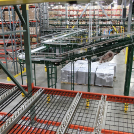 Pallet Flow Rack Shelf Level in Pick Module
