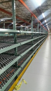 D2 on UPICK Carton Flow Racking